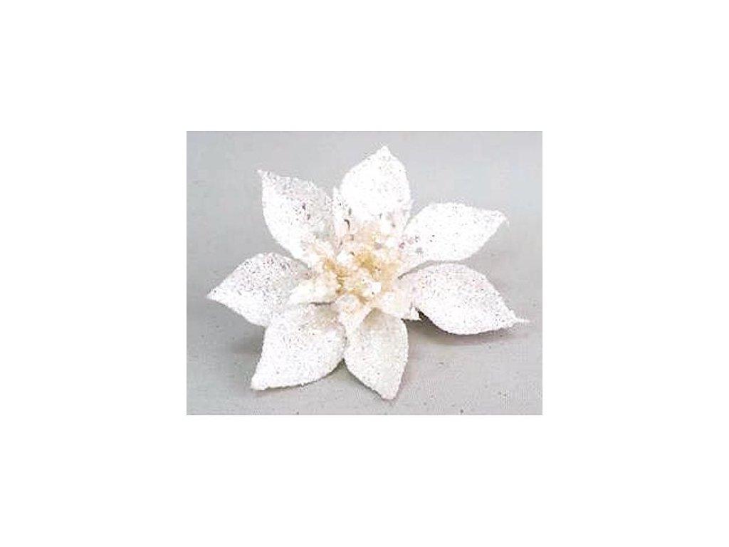 Kvet Poinsettia Gliterclip.White, biela, 10 cm