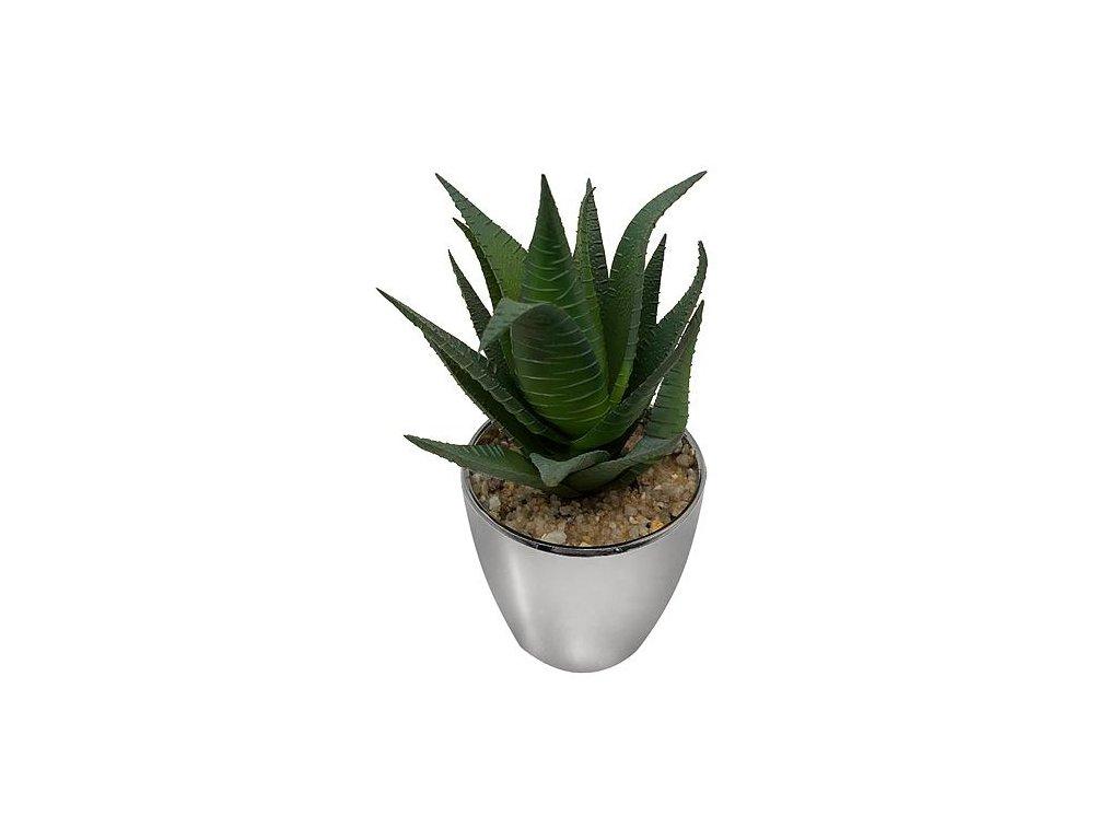 Sukulent MagicHome S15642, 17 cm, kvetináč - plast, strieborný