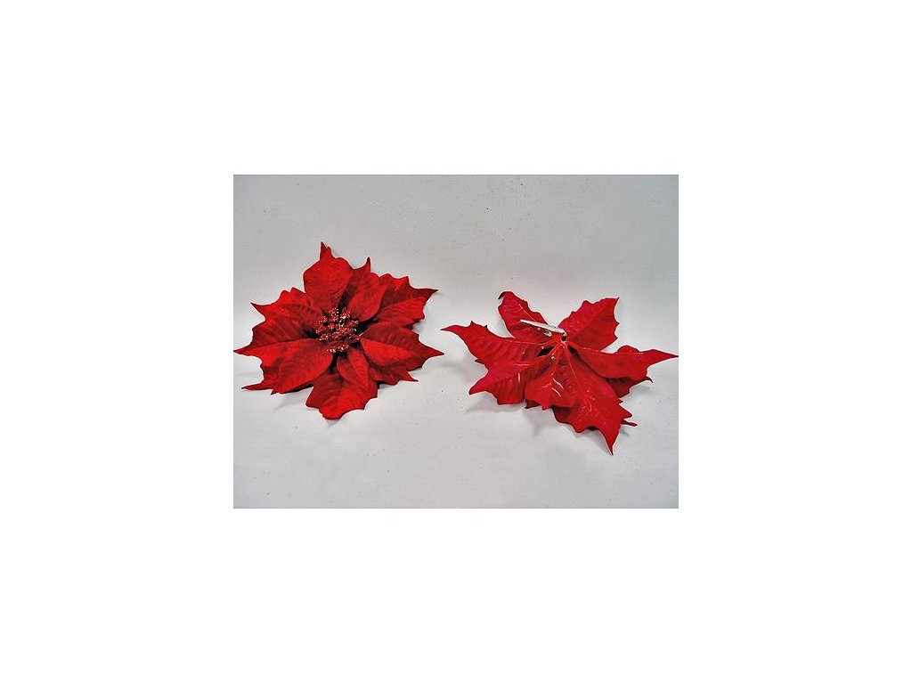 Kvet Poinsettia Clipon23, červená, 23 cm, bal. 12 ks