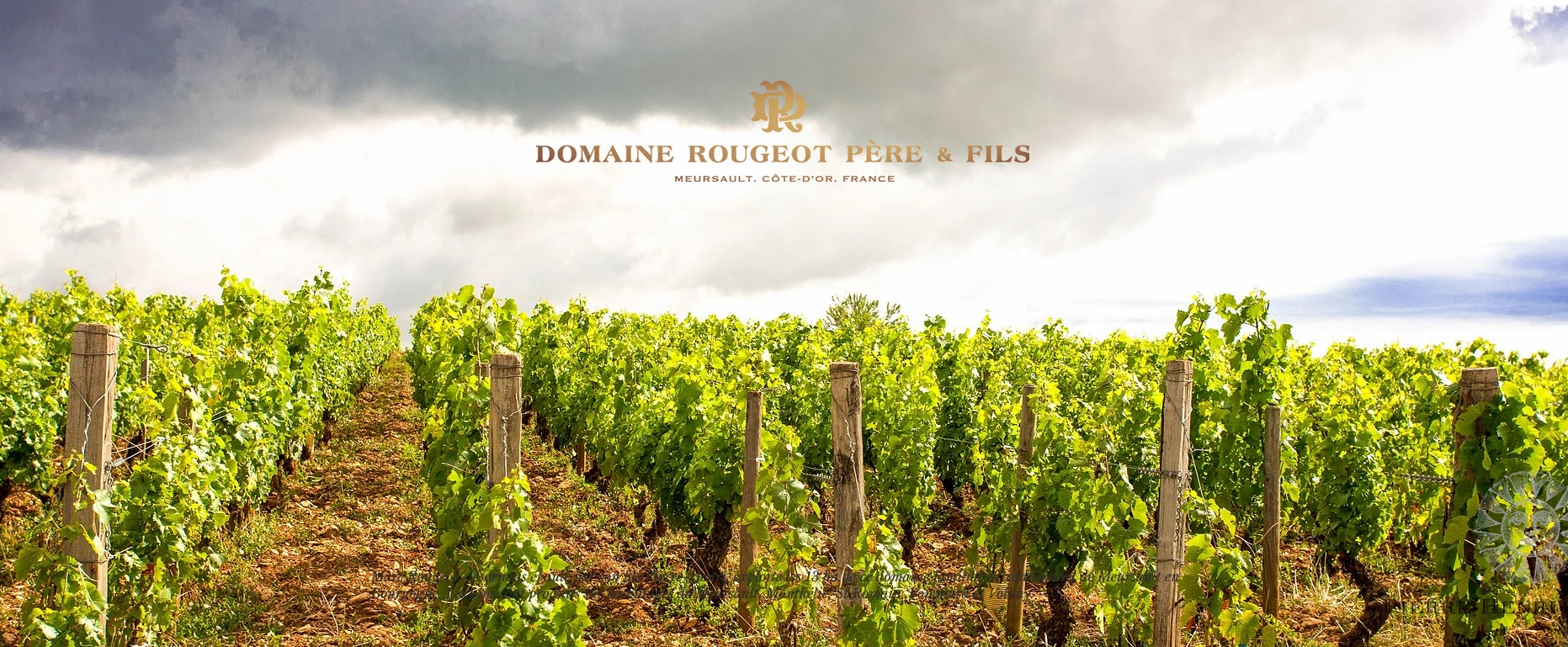 Domaine-Rougeot