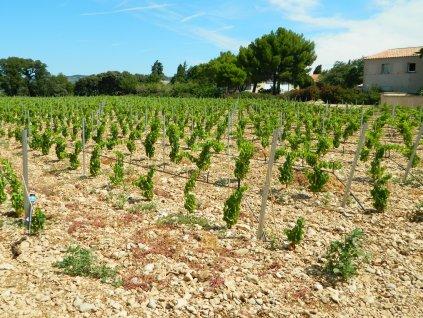 Chateau La Couranconne vinice 2