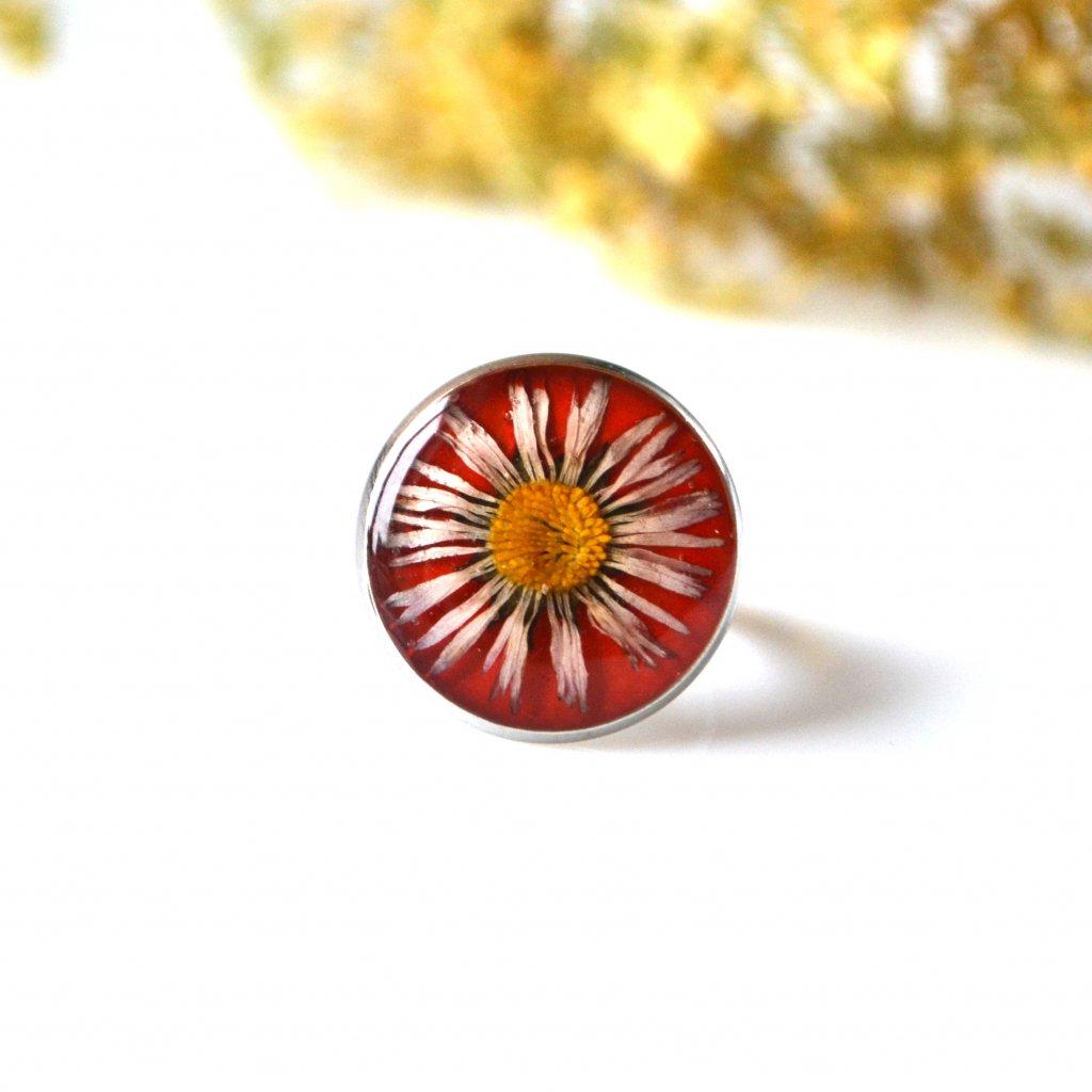červený prsten se sedmikráskou (3)