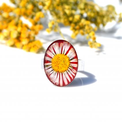 sedmikráskový prsten (1)