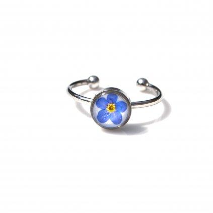 pomněnka prsten (1)