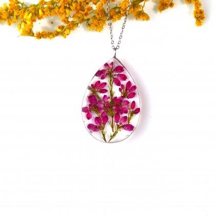 ozothamnus náhrdelník (1)