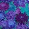 Japonské chryzantémy fialové