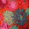 Japonské chryzantémy rudé