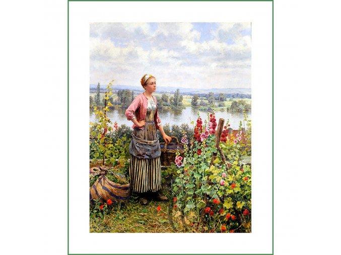 látkový panel obrázek natištěný na plátně na šití na patchwork D.R. Knight (11)