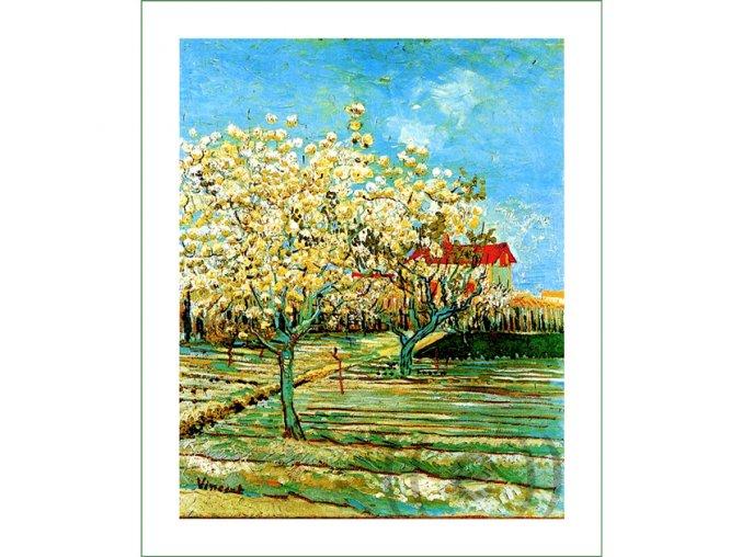 668 obraz Vincent van Gogh (19)