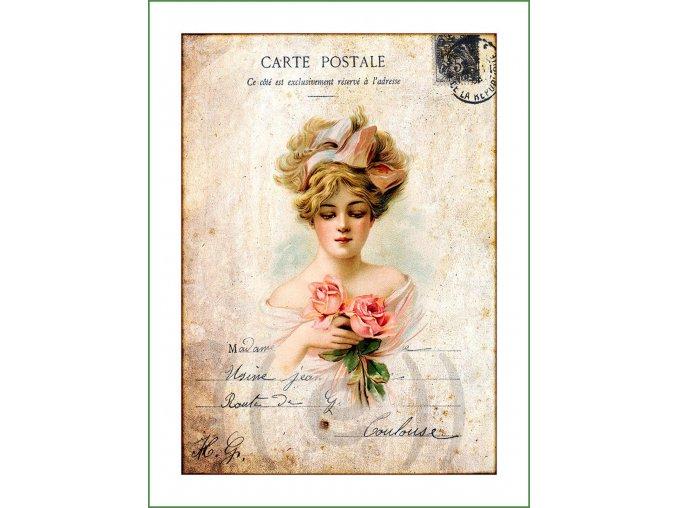 látkový vintage panel na šití obrázek natištěný na plátně na patchwork nášivka na oblečení (181)