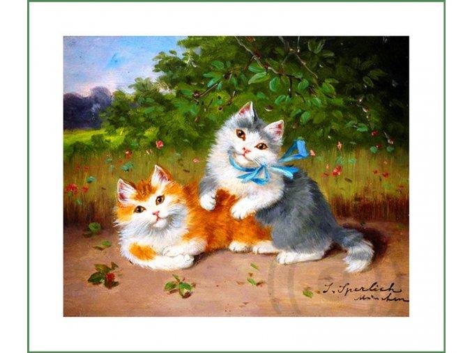 látkový panel kočky kočičky obraz na látce na patchwork na šití na obaly na knihy Sophie Sperlich (1)