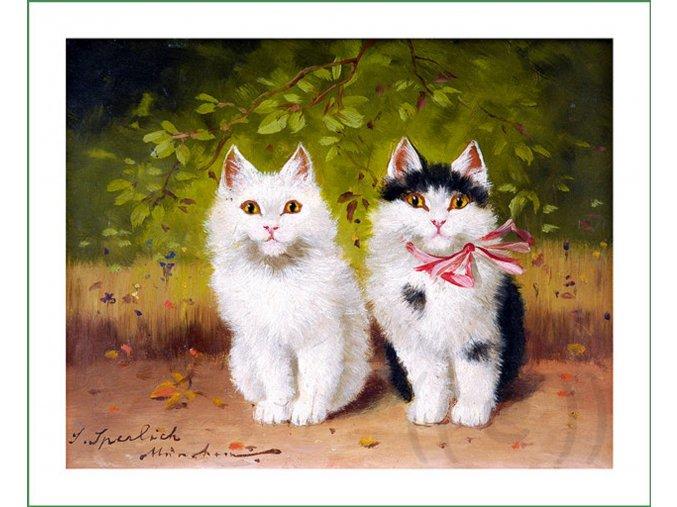 látkový panel kočky kočičky obraz na látce na patchwork na šití na obaly na knihy Sophie Sperlich (7)