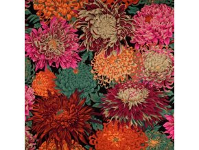 Japonské chryzantémy červené