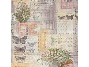 Bavlněné plátno Wallflower Botanical in Multi