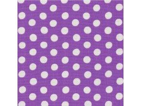 Puntíky šedé na fialové