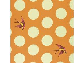 bavlněné plátno Free Fall in Creamsicle, šířka 274 cm