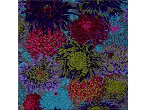 Japonské chryzantémy šedé