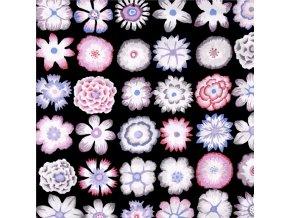 bavlněné plátno Button Flowers in Black, Kaffe Fassett