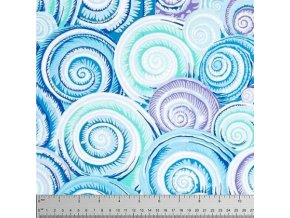 Spiral Shells in Sky Blue, Philip Jacobs