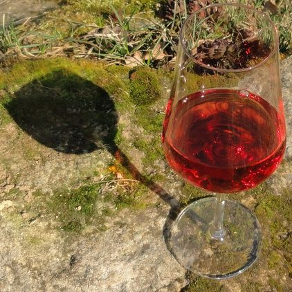 Ochutnávka s vinaři 1.6.2019