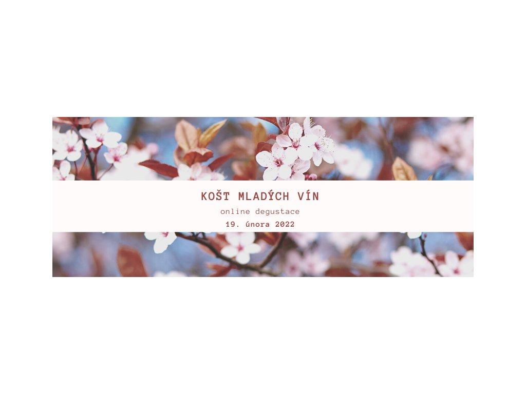 Mladá vína 2020 sucháče - velká