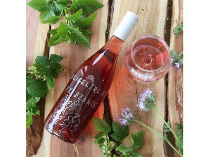 01 Zweigeltrebe rosé Frizzante, polosladké