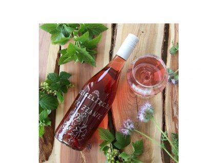 01 Zweigeltrebe rosé Frizzante, polosladké 2