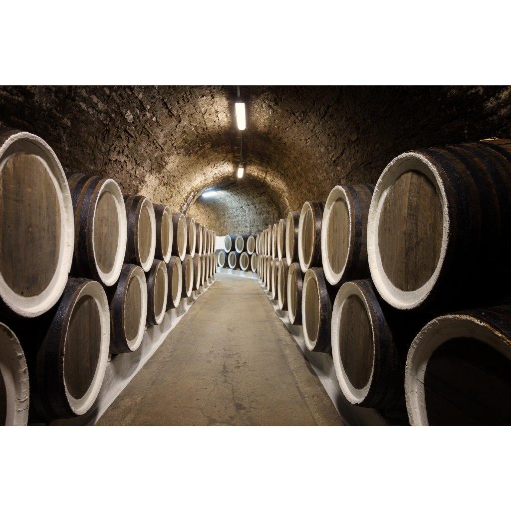 barrels in the wine cellar PADVC42