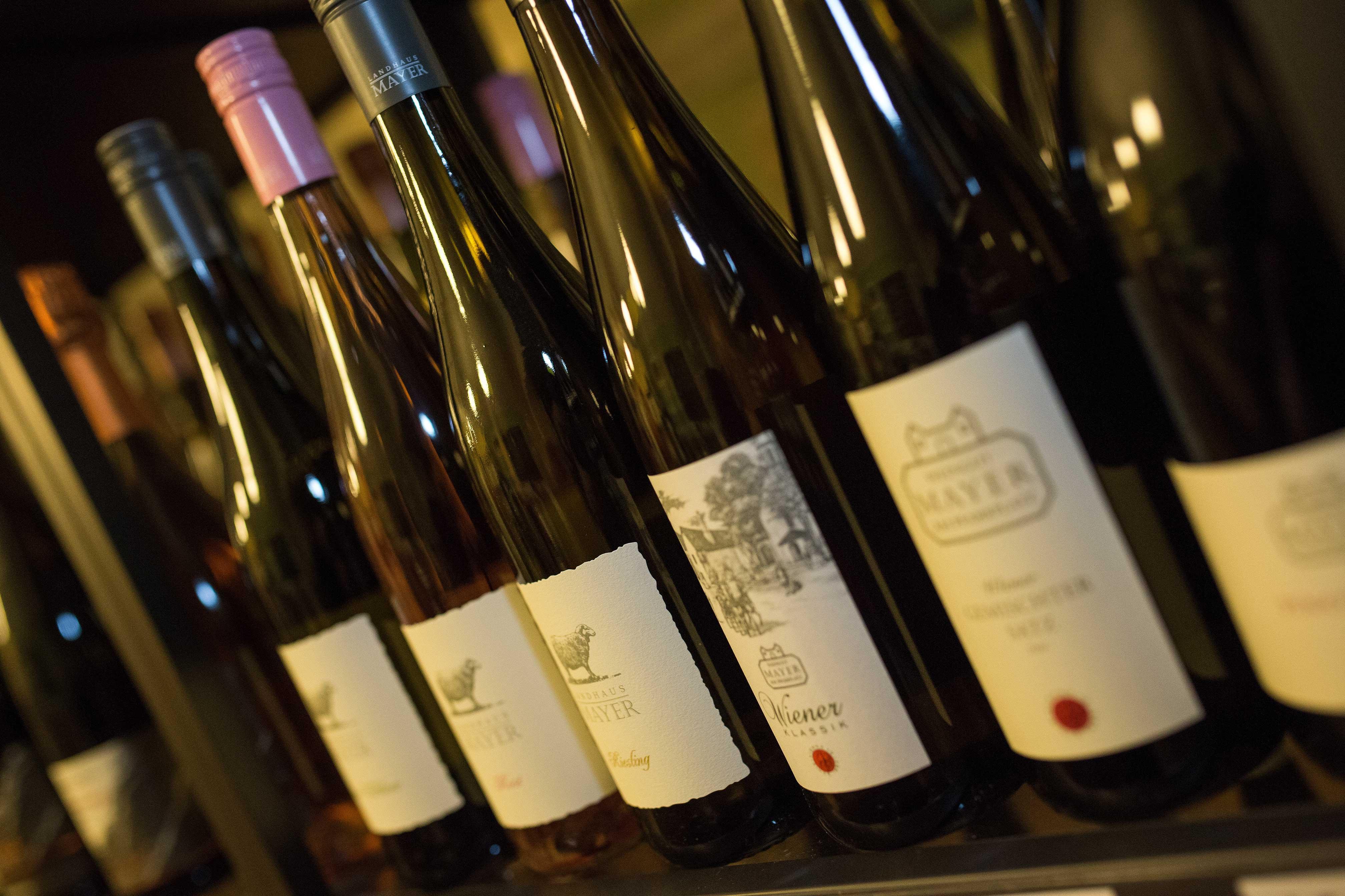 Naše vína Vás budou bavit