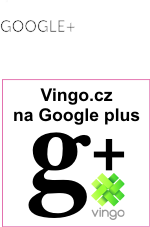 Vingo na google plus