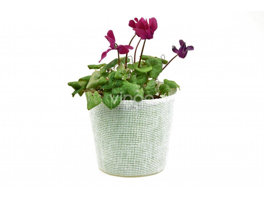 12661 kvetinac bily