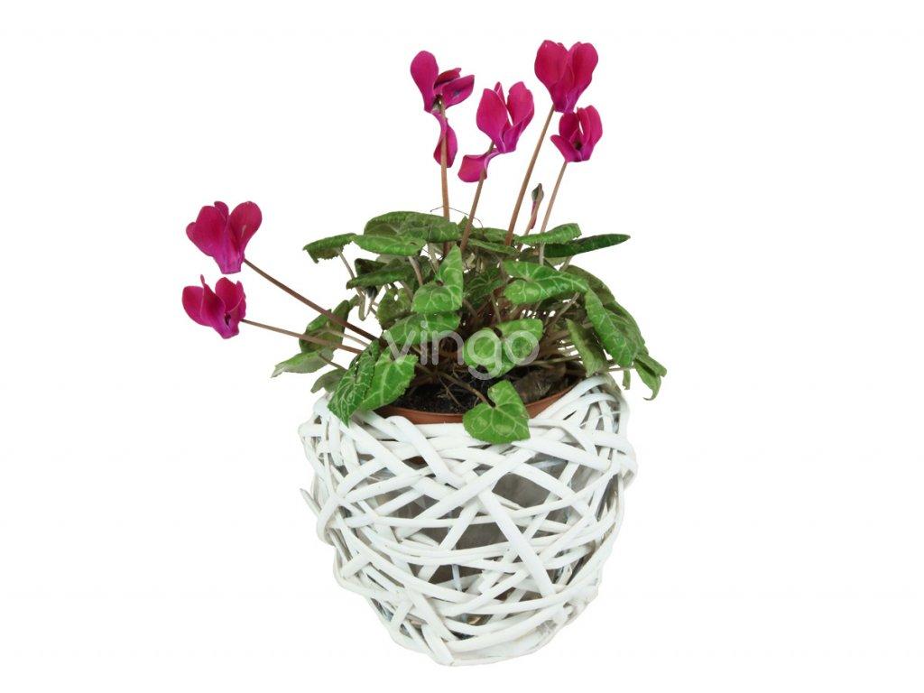Bílý proutěný květináč tvaru hnízdo.