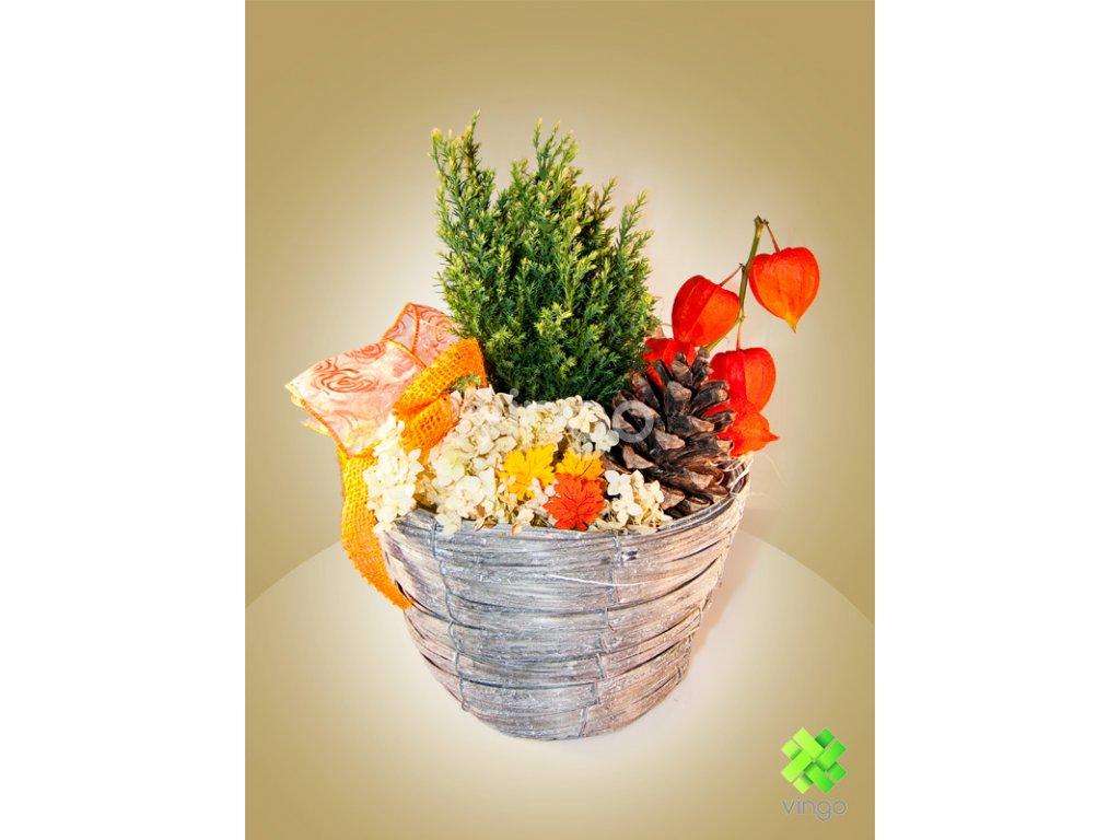 Květináč šedý s igelitovou vložkou ve tvaru misky