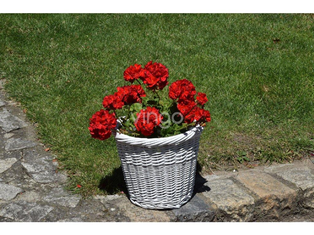 5444 kvetinac bily