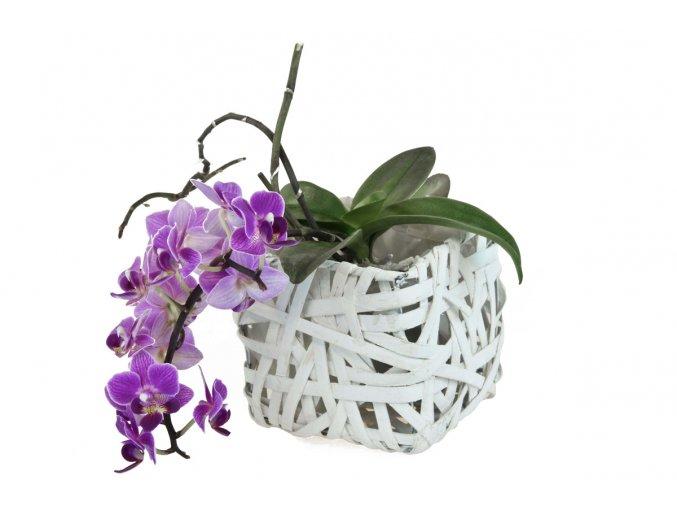 Bílý hranatý květináč z dýhy