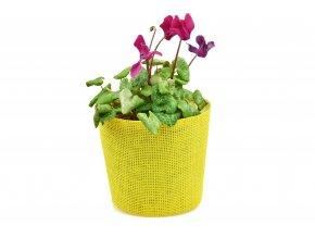 Květináč žlutý