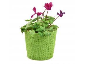 Květináč zelený