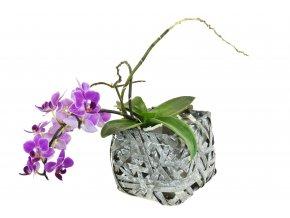 Květináč čtverhraný šedý (rozměry (cm) 12x12, v. 11)
