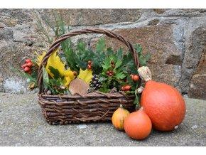 Květináč z kořene s ručkou pro podzimní dekorace