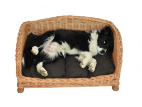 Proutěná pohovka pro psy