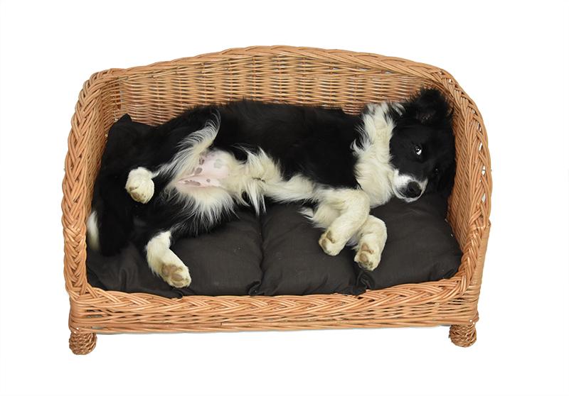 Proutěná pohovka pro psy Rozměry: 95x75, v. 40 cm, výška vstupu 13 cm