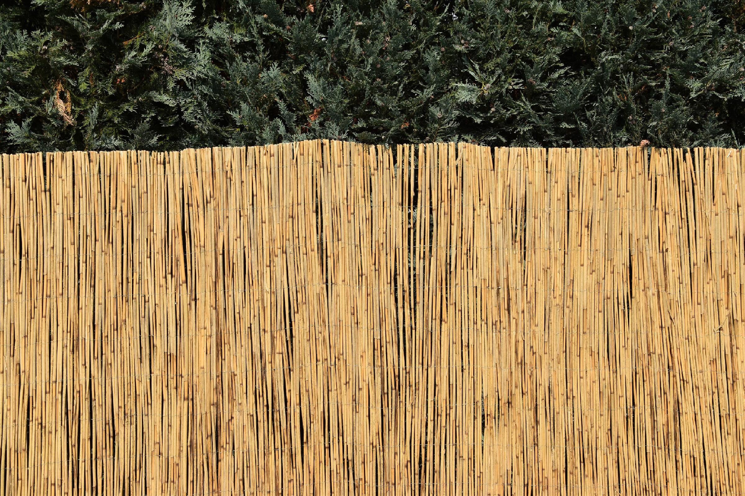Rákosová zástěna na plot Výška plotu: 100 cm, Délka plotu: 600 cm