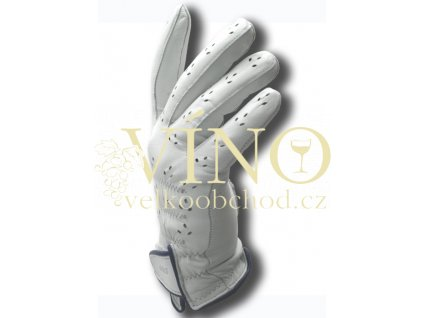 aGOLF golfová rukavice dámská vel. 6 1/2, tm. modrá, pravá