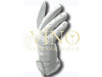 aGOLF golfová rukavice dámská vel. 6 1/2, sv. zelená, pravá