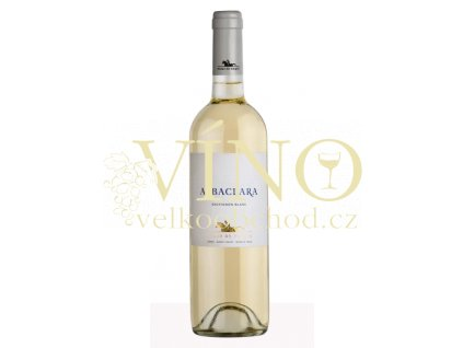 Haras de Pirque Albaclara Sauvignon Blanc Gran Reserva 0,75 L chilské bílé víno z oblasti Maipo Valley