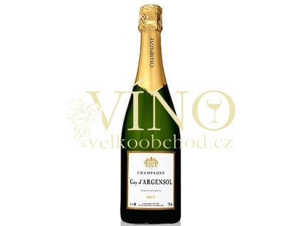 1021 champagner guy dargensol brut big
