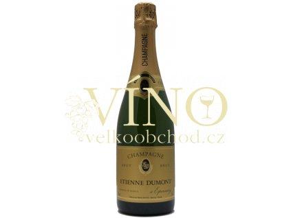 Víno Etienne Dumont Champagne Brut 0,75 l francouzské šampaňské