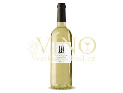 Morandé Alameda Sauvignon Blanc 0,75 L suché chilské bílé víno z Central Valley