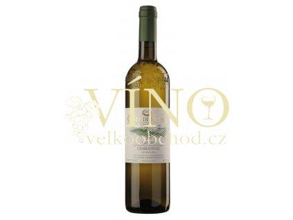 Costa di Bussia Chardonnay Langhe DOC 0,75 l suché italské bílé víno z Piemonte