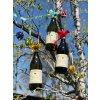 Langhe Chardonnay DOC 2017